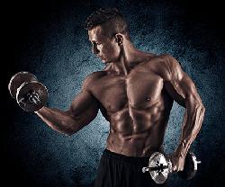 Aus-und Weiterbildung Fitness-Wellness-Trainer incl. A, B, C Lizenz Berlin
